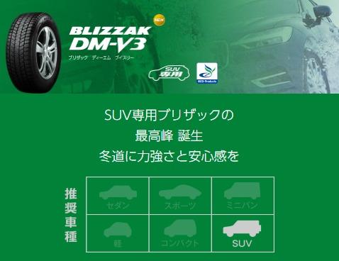 BLIZZAK DM-V3